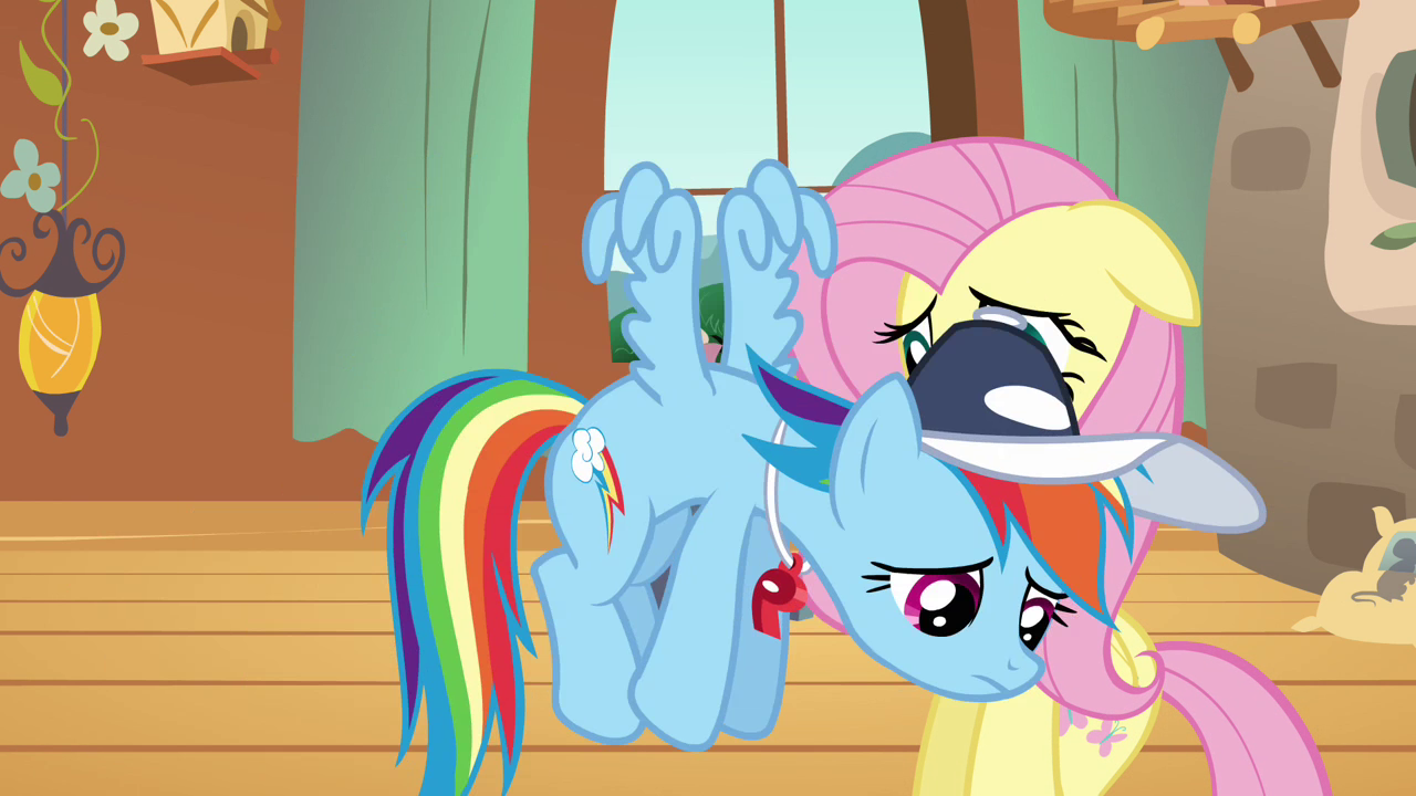 https://s.mlpforums.com/uploads/post_images/img-1884091-1-Rainbow_Dash_fails_to_persuade_Fluttershy_S2E22.png